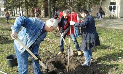 Дерева Миру Краматорськ, фото 5